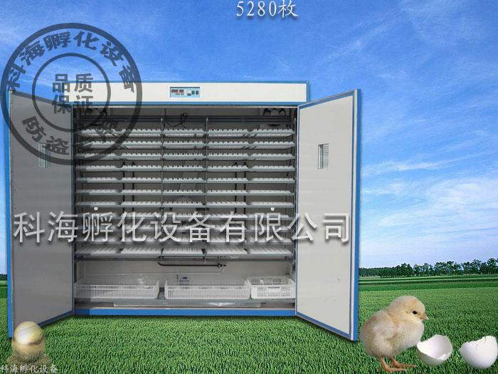 科海AFG微电脑全自动孵化机